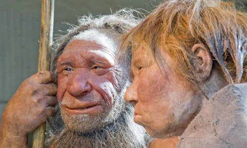 Reconstructions of a Neanderthal and a woman at the Neanderthal museum